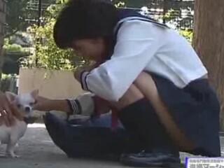 【パンチラ盗撮動画】小ささが自慢の愛犬豆チワワの首輪にカメラ仕込んで散歩!JKが寄ってきて白パンティ捕獲w